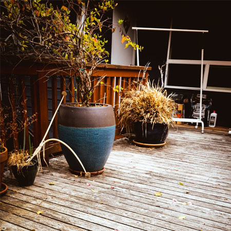 Patio, backyard, patio deck, garden, summer, landscape